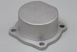 Cover Plate (Silver) 12CV фото
