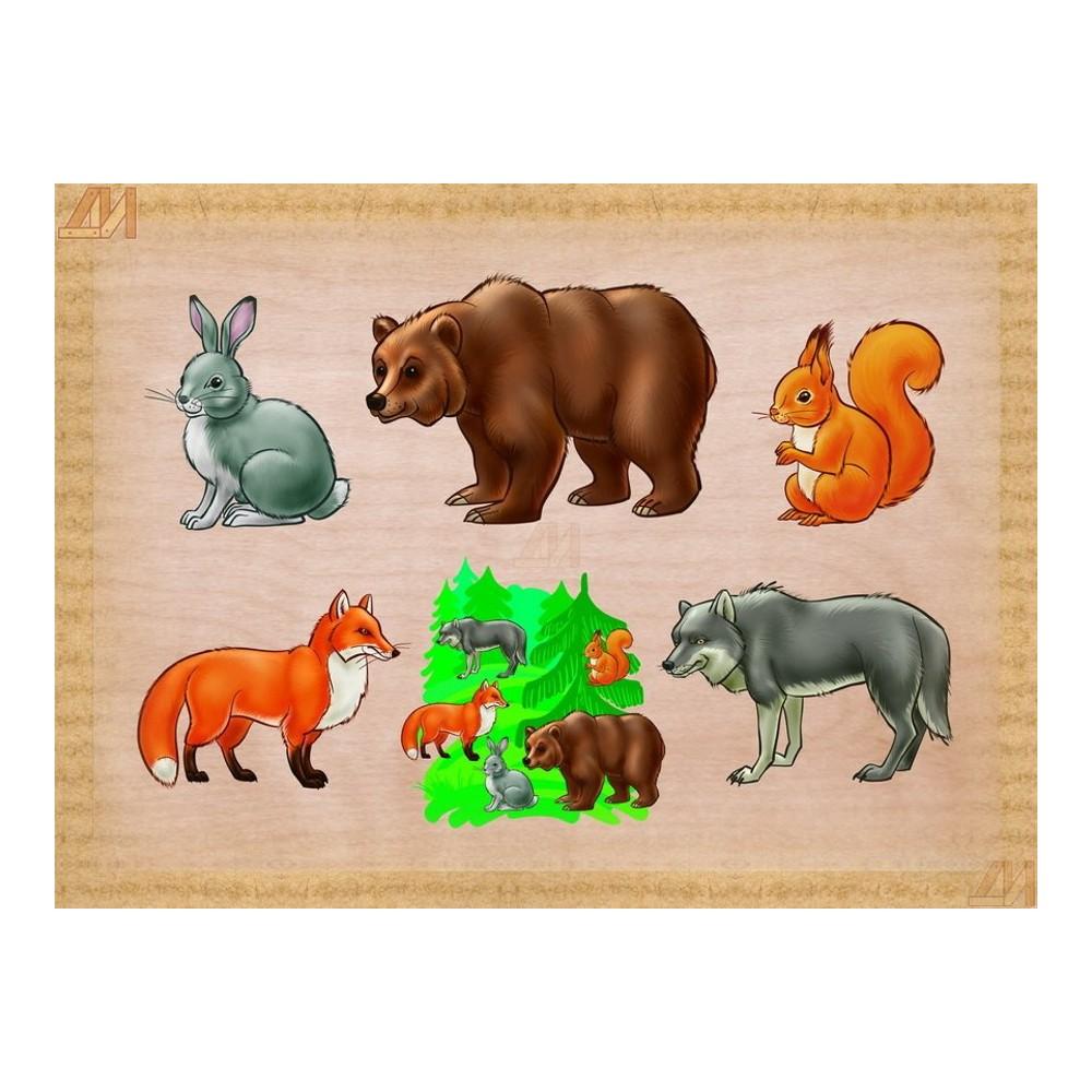 Картинка о животных для детей, днем